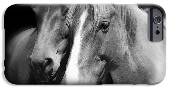 Horse Racing iPhone Cases - Equine Peace iPhone Case by Daniel Hagerman