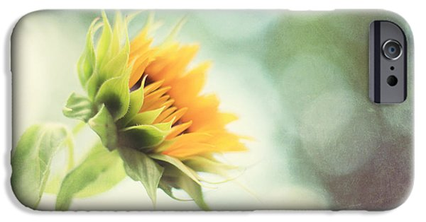 Sunflower Photograph iPhone Cases - Eternal Optimist iPhone Case by Amy Tyler
