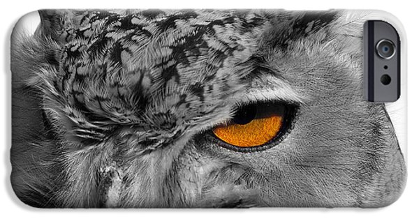 Photos Of Birds iPhone Cases - Eurasian Eagle Owl iPhone Case by Skip Willits