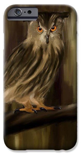 Bird Of Prey Art iPhone Cases - Eurasian Owl Look iPhone Case by Lourry Legarde
