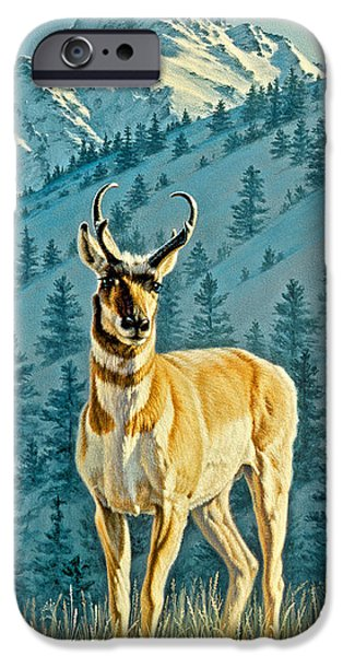 Yellowstone Park iPhone Cases - Evening Below Electric Peak iPhone Case by Paul Krapf