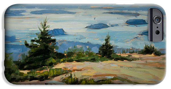 Maine Landscapes Paintings iPhone Cases - Evening Drift iPhone Case by Philip Frey