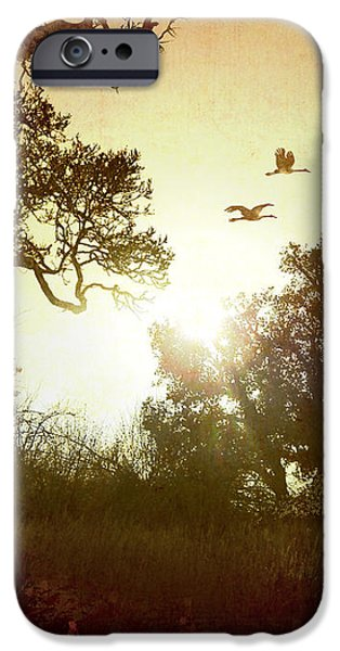 Evening Flying Geese iPhone Case by Bedros Awak
