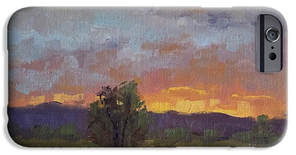Fort Collins Paintings iPhone Cases - Evening Light at Fossil Creek iPhone Case by Bonnie Bowne