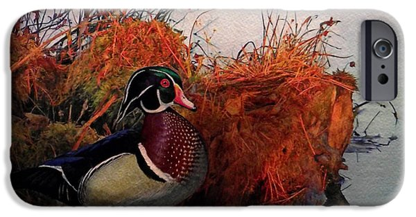 Affordable iPhone Cases - Evening Light Wood Duck iPhone Case by Ken Everett