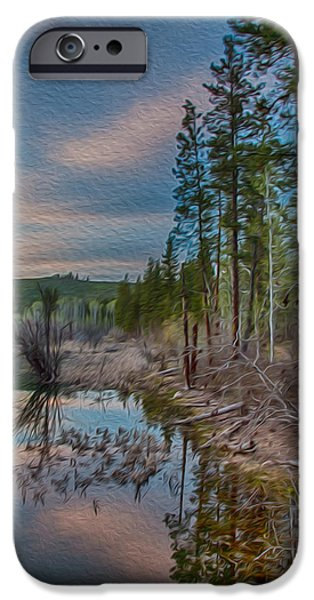 Evening on the Banks of a Beaver Pond iPhone Case by Omaste Witkowski