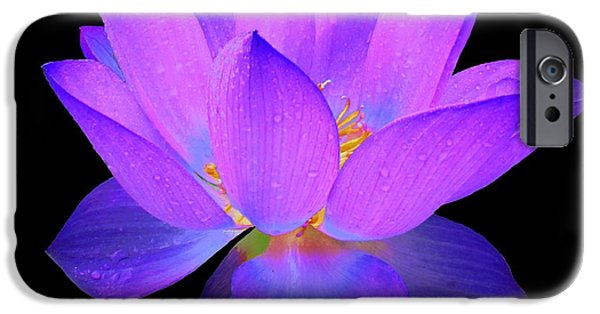 Business Digital Art iPhone Cases - Evening Purple Lotus  iPhone Case by David Dehner