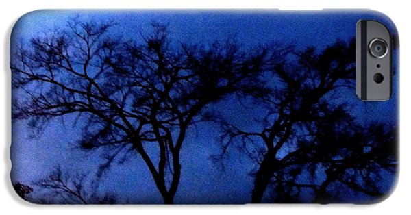 Creepy iPhone Cases - Evening Sky iPhone Case by Gardening Perfection