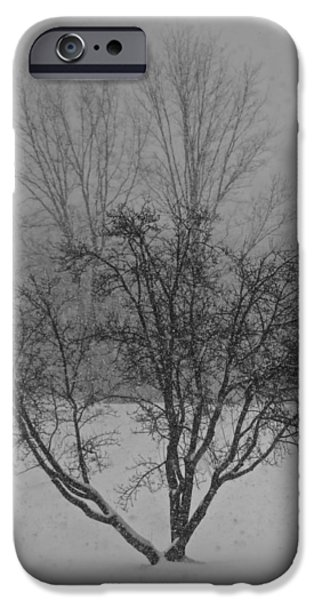 Winter Storm iPhone Cases - Evening Snow Storm iPhone Case by Mac Titmus