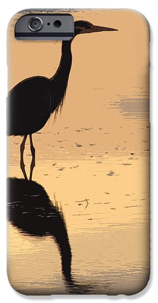 Sea Birds iPhone Cases - Evening Walk iPhone Case by Michael Klerck