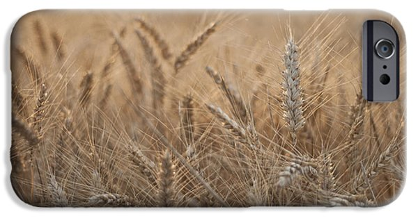 Consumerproduct iPhone Cases - Evening Wheat iPhone Case by Nomad Art And  Design