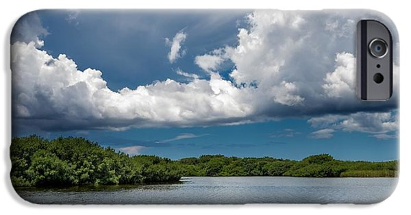 Mangrove Forest iPhone Cases - Everglades 0254 iPhone Case by Rudy Umans