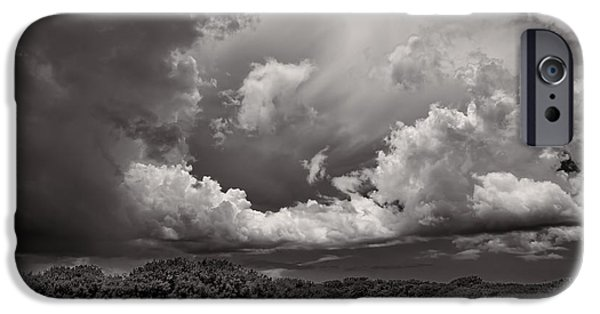 Mangrove Forest iPhone Cases - Everglades 0257BW iPhone Case by Rudy Umans
