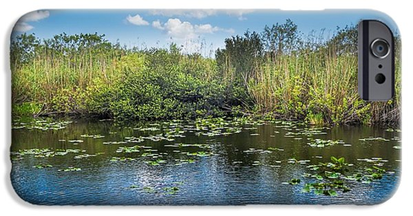 Mangrove Forest iPhone Cases - Everglades 0817 iPhone Case by Rudy Umans