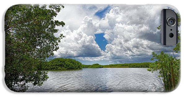 Mangrove Forest iPhone Cases - Everglades Lake - 0278 iPhone Case by Rudy Umans