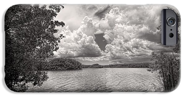Mangrove Forest iPhone Cases - Everglades lake - 0278BW iPhone Case by Rudy Umans