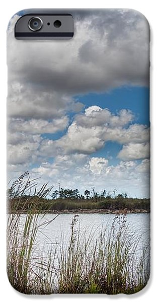 Everglades Lake 6853 iPhone Case by Rudy Umans