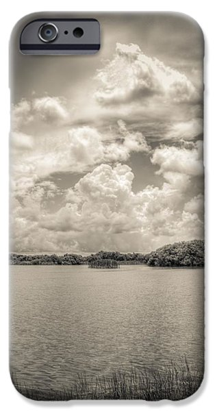 Mangrove Forest iPhone Cases - Everglades lake 6919 BW iPhone Case by Rudy Umans