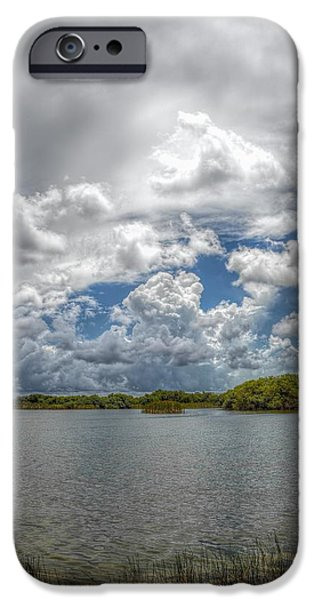 Mangrove Forest iPhone Cases - Everglades lake 6919 iPhone Case by Rudy Umans