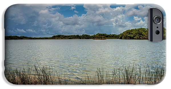 Mangrove Forest iPhone Cases - Everglades lake 6930 iPhone Case by Rudy Umans