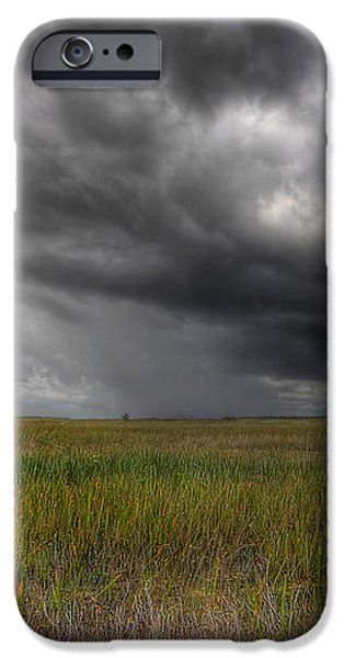 Everglades Storm iPhone Case by Rudy Umans
