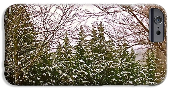 Snowy Night Mixed Media iPhone Cases - Evergreens In Winter iPhone Case by Bellesouth Studio