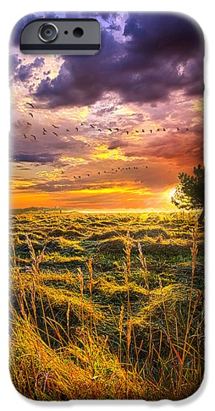Flight iPhone Cases - Every Story Has A Beginning iPhone Case by Phil Koch