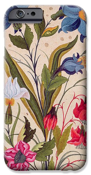 Seventeenth Century iPhone Cases - Exotic flowers with insects iPhone Case by Mughal School
