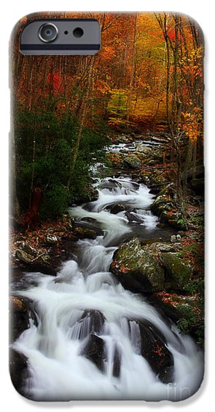 Fall Scenes iPhone Cases - Exploring Autumn iPhone Case by Michael Eingle