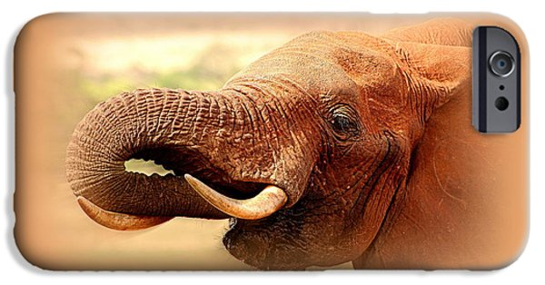 Elephants iPhone Cases - Extinction Is Forever iPhone Case by Sue Long