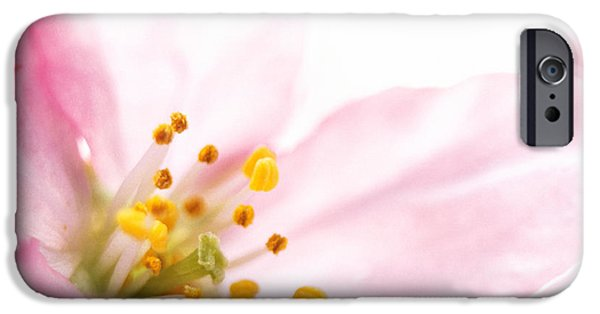 Designs In Nature iPhone Cases - Extreme Close Up Of Cherry Blossom iPhone Case by Panoramic Images