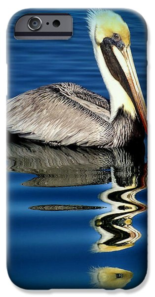 Reflective iPhone Cases - EYE of REFLECTION iPhone Case by Karen Wiles