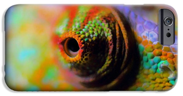 Chameleon iPhone Cases - Eye of the Chameleon  iPhone Case by Mountain Dreams