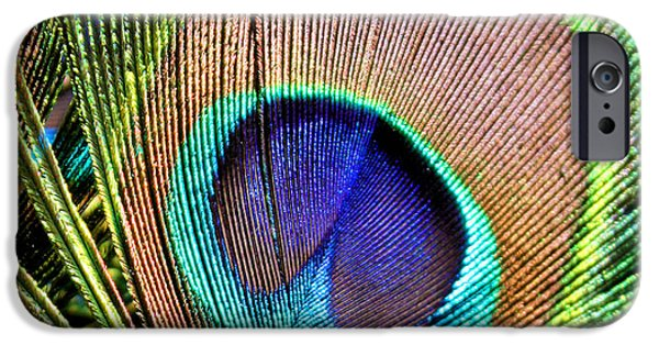 Macro iPhone Cases - Eye of the Feather iPhone Case by Kristin Elmquist