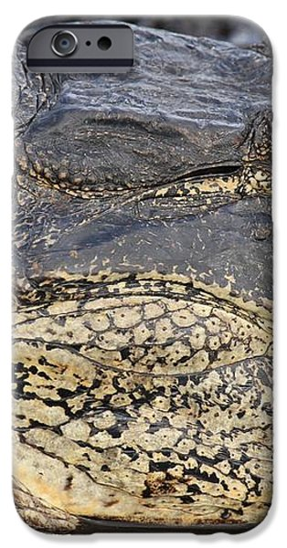Eye Of The Gator iPhone Case by Adam Jewell