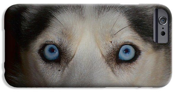 Husky iPhone Cases - Eyes of a Husky iPhone Case by Mountain Dreams