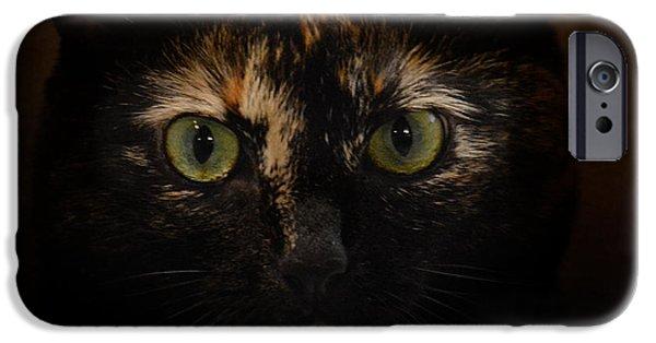 Mischief iPhone Cases - Eyes of Mischief iPhone Case by Jai Johnson