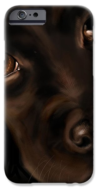 Black Dog iPhone Cases - Eyes iPhone Case by Veronica Minozzi