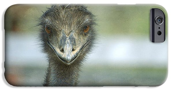 Emu iPhone Cases - Eyes Wide Open iPhone Case by Fraida Gutovich