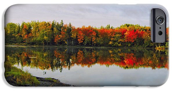 Fall iPhone Cases - Fabulous Fall iPhone Case by Kathleen Sartoris
