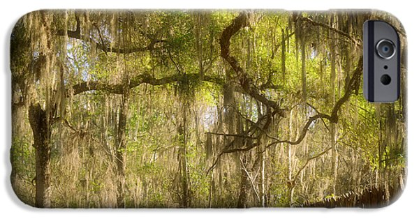 Con iPhone Cases - Fabulous Spanish Moss iPhone Case by Christine Till