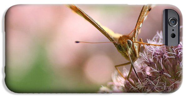 Insects iPhone Cases - Face to Face with a Fritillary Butterfly  iPhone Case by Neal  Eslinger