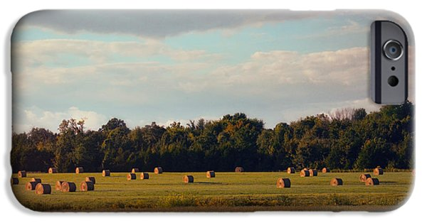 Tennessee Hay Bales iPhone Cases - Facing the Sun iPhone Case by Jai Johnson