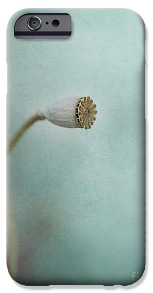 Capsule iPhone Cases - faded summer I iPhone Case by Priska Wettstein