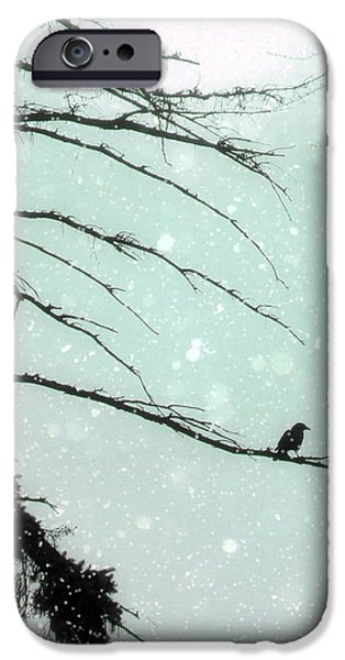 Snow Scene Digital iPhone Cases - Faded Winter Sun iPhone Case by Gothicolors Donna Snyder