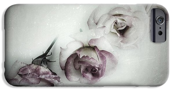 Close Up Floral iPhone Cases - Fading Feelings iPhone Case by Marianna Mills