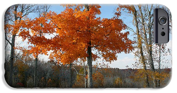 Natchez Trace Parkway iPhone Cases - Fading Glory iPhone Case by Philip Hartnett