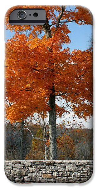 Fading Glory iPhone Case by Philip Hartnett
