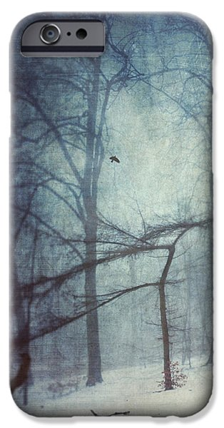 Abstractions iPhone Cases - Hazy Winter Day iPhone Case by Dirk Wuestenhagen