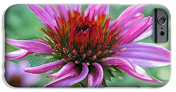 Abstracted Coneflowers Paintings iPhone Cases - Fairy Dust iPhone Case by Suzy Freeborg